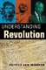 Picture of UNDERSTANDING REVOLUTION