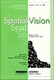 Picture of Spatial Vision