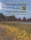 Picture of WILDFLOWERS OF THE WESTERN GREAT LAKES REGION