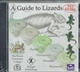 Picture of A GUIDE TO LIZARDS