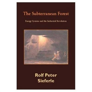 Picture of The Subterranean Forest: Energy Systems and the Industrial Revolution (2nd Edition)