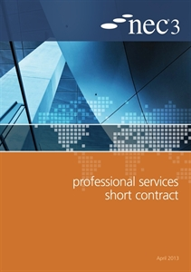 Picture of Professional Services Short Contract